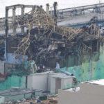 福島原発周辺は現在ゴーストタウン?避難区域の動物や放射線量は?